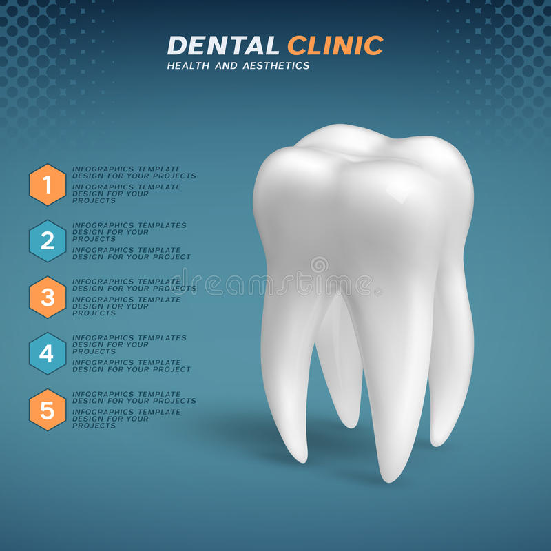 Dental clinic infographic with molar tooth icon. Vector illustration vector illustration