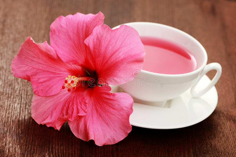 Hibiscus tea royalty free stock photography