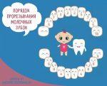 Зубы у детей порядок прорезывания молочных коренных – Зубы у детей порядок прорезывания коренных зубов
